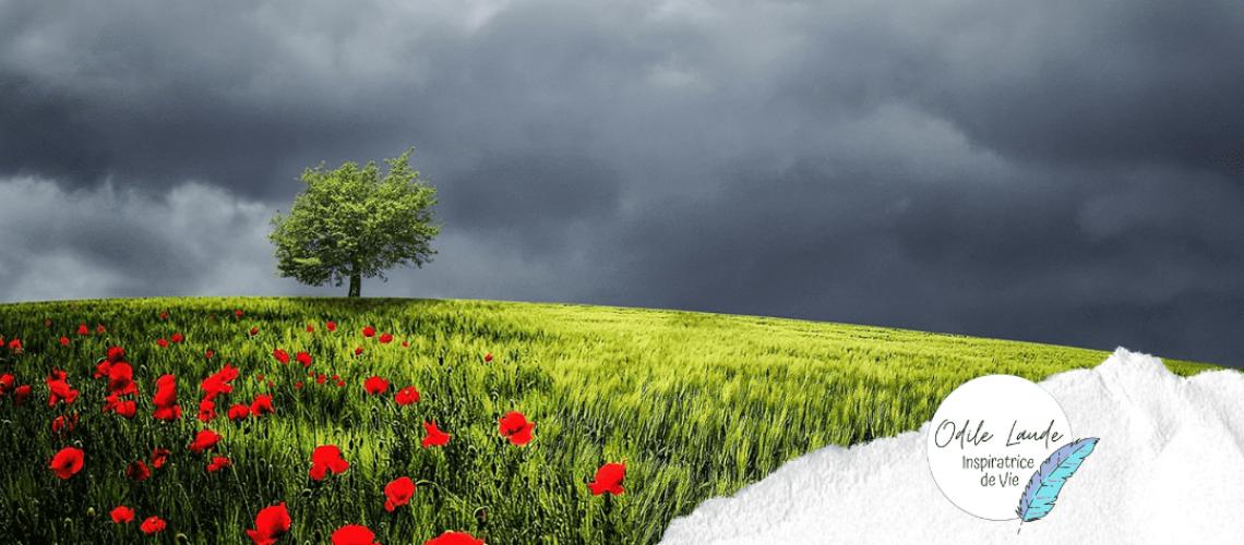 le parfum du bonheur est plus fort sous la pluie Odile Laude Inspiratrice de vie